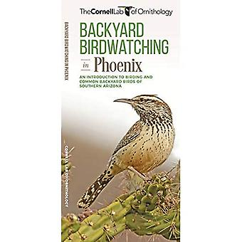 Backyard Birdwatching in Phoenix: An Introduction to� Birding and Common Backyard Birds of Southern Arizona (All about Birds Pocket Guide)