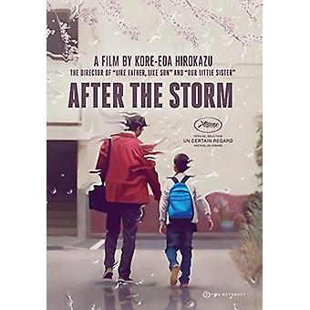 After the Storm [Blu-ray] USA import