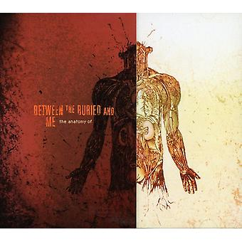 Between the Buried & Me - Anatomy of [CD] USA import