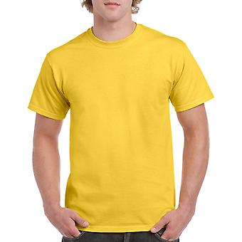 Gildan G5000 Plain Heavy Cotton T Shirt in Daisy