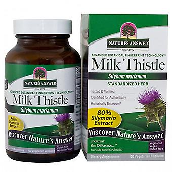 Nature's Answer Milk Thistle Seed Standardized, 120 Vcaps