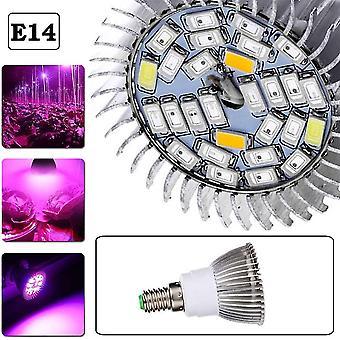 28Leds täysi spektri kasvaa kevyt sisäkasvilamppu 10w e14 kasvaa sipuli hydroponinen tai kasvihuonekasvillisuus dt5944