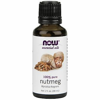 Now Foods Nutmeg Oil Pure, 1 OZ