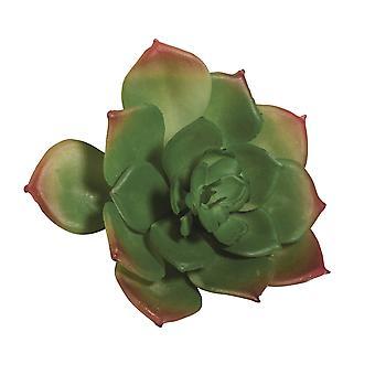 Liten 9.5 cm plast Echeveria suckulent anläggning för miniatyr trädgårds hantverk