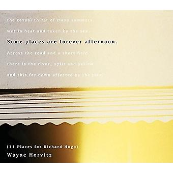 Wayne Horvitz - Some Places Are Forever Afternoon (11 Places for) [CD] USA import