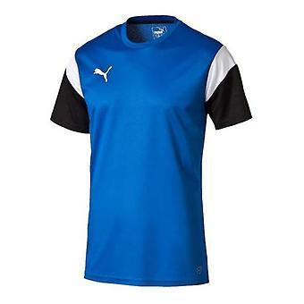 Puma Football Training Shirt (Royal-White)