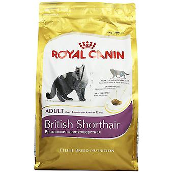 Royal canin cat food britanic Shorthair Dry Mix 4 kg