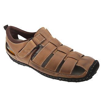 Roamers Mens Touch fixation fermé orteils sandales