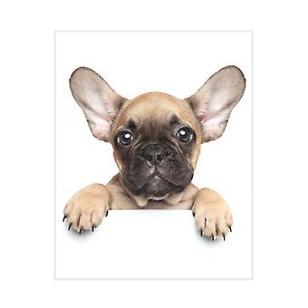 Manta francesa Bulldog Puppy Fleece
