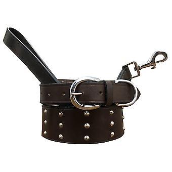 Bradley crompton genuine leather matching pair dog collar and lead set cdkupb091