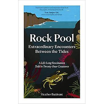Rock Pool: Extraordinary Encounters Between the Tides: A Life-long Obsession told in Twenty Creatures