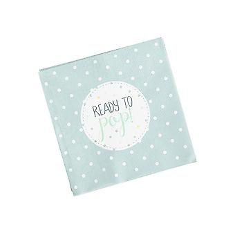 Oh Baby Napkins Mint Green Baby Shower Pack of 20