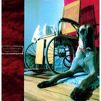 Don Caballero - For Respect [Vinyl] USA import