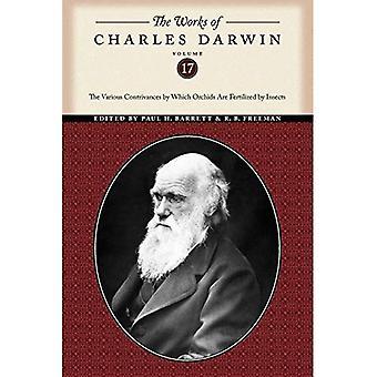 Les œuvres de Charles Darwin, Volume 17: les divers artifices par laquelle les orchidées sont fécondées par des insectes
