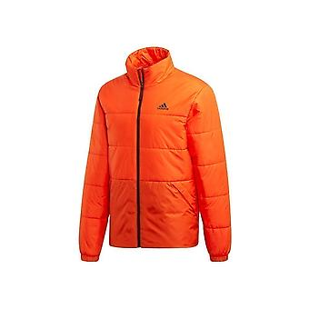 Adidas Bsc 3S Insulated DZ1401 universal all year men jackets