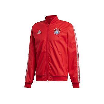 Adidas Bayern Monachium Anthem DX9218 football all year men jackets
