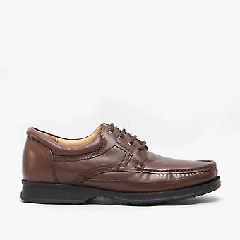 Roamers Dylan Mens couro rendaaté avental sapatos brown