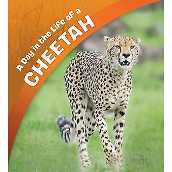 A Day in the Life of a Cheetah door Lisa J. Amstutz - 9781474764971 Boek