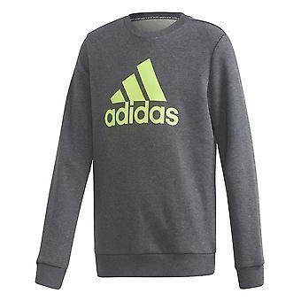 Adidas πρέπει να έχουν πλήρωμα FP8935 καθολική όλο το χρόνο μπλούζες αγόρι