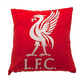 Amortiguador del Liverpool FC