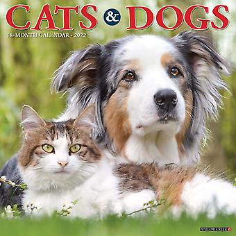 Cats  Dogs 2022 Wall Calendar by Willow Creek Press