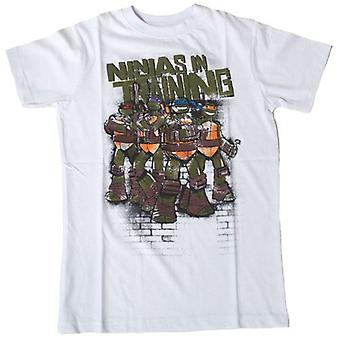 TEENAGE MUTANT NINJA TURTLES (TMNT) Ninjas In opleiding Kids T-Shirt, 164 / 170cm, wit (TSY00058TNT-164)