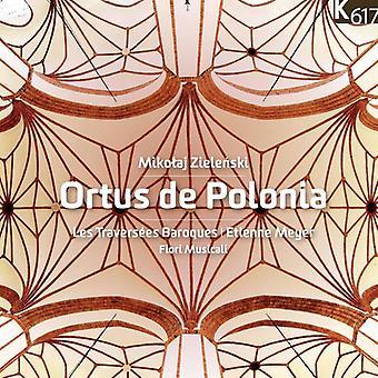Zielenski / Meyer / Les Traversees steekt - Ortus De Polonia [CD] USA import