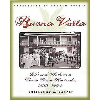 Buena Vista by Baralt & Guillermo