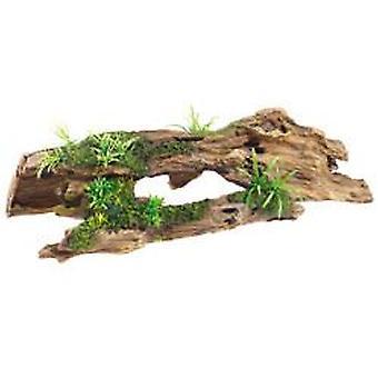 קלאסי עבור חיות מחמד עצי המחמד/צמחים 370mm (דג, קישוט, סלעים & מערות)