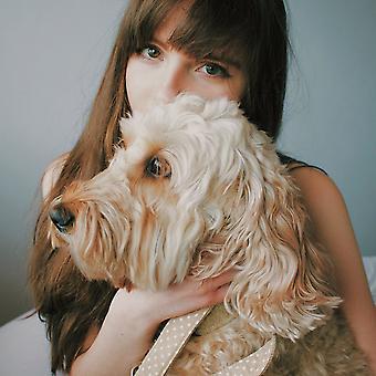 Hundeleine - Schiefer Haferflocken