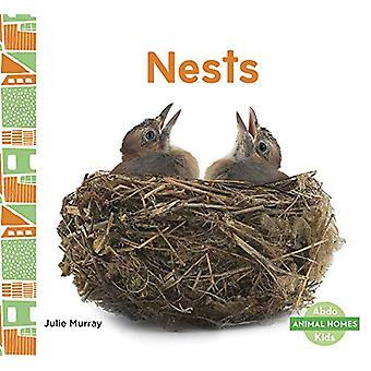 Animal Homes - Nests von Julie Murray - 9781644941218 Buchen