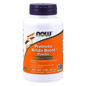 Теперь продукты Пребиотические Бифидо Boost Порошок, 3 Оз