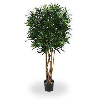Kunstig Draceana Reflexa grøn 150cm
