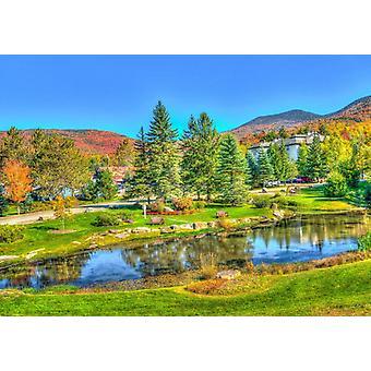 Bluebird Stowe, Vermont, USA Puzzle (1000 Teile)