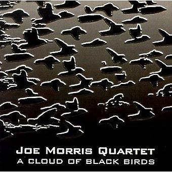 Joe Morris Quartet - Cloud of Black Birds [CD] USA import