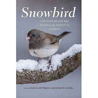 Snowbird: Integrerende biologi og evolusjonære mangfold i Junco