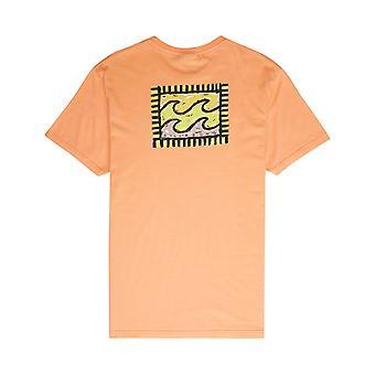 Billabong Nairobi korte mouwen T-shirt in cantaloupe