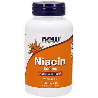 Nu voedingsmiddelen, Niacine, 500 mg, 100 Capsules