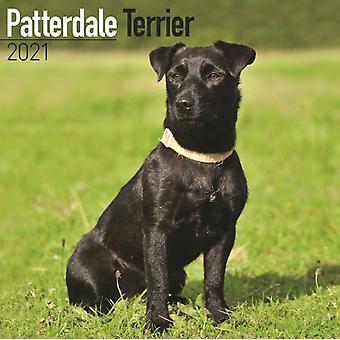 Patterdale Terrier 2021 Wall Kalender af Oprettet af Avonside Publishing Ltd