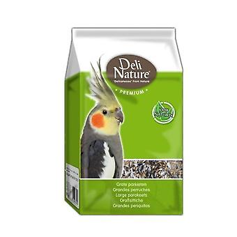 Beyers Deli Nature Premium Large Parakeets (Birds , Bird Food)