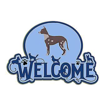 Decorative plaques carolines treasures ck8058dhw welcome door hanger