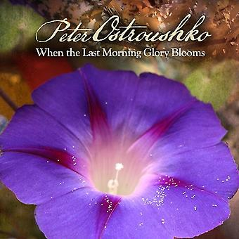 Peter Ostroushko - When the Last Morning Glory Blooms [CD] USA import