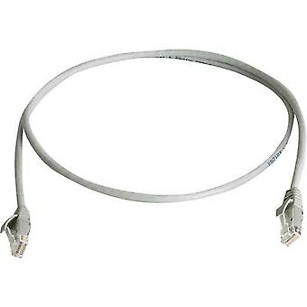Telegärtner RJ45 Network cable, patch cable CAT 6 U/UTP 0.50 m Grey Flame-retardant, Halogen-free