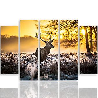 Vijf deel foto op canvas, Pentaptych, type B, herten zonsondergang