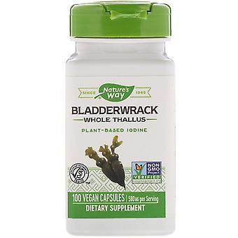 Nature's Way, Bladderwrack, 580 mg, 100 Vegan Capsules