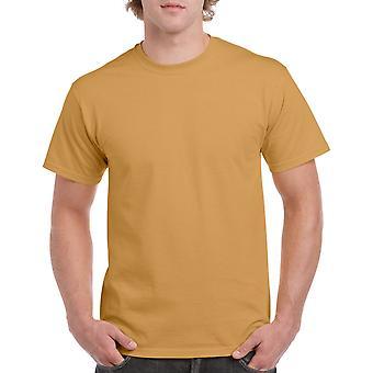 Gildan G5000 Plain Heavy Cotton T-shirt in oud goud