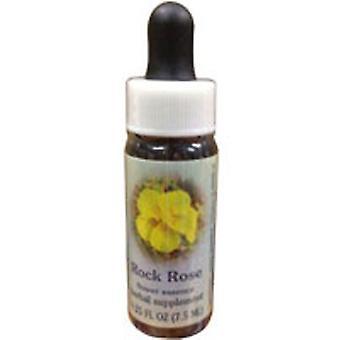 Flower Essence Palvelut Rock Rose Dropper, 0,25 oz