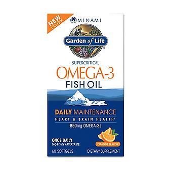 Minami Omega-3 Fish Oil Daily Maintenance Orange 60 softgels