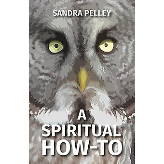 A Spiritual How-To by Sandra Pelley - 9780228801979 Book