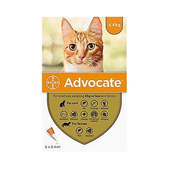 Abogar gatos de menos de 4 kg (8.8 lbs) - 6 pack